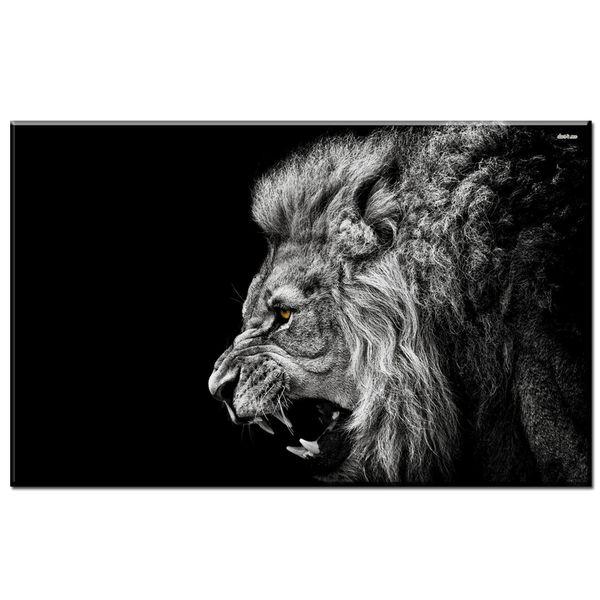 Satin Al 1 Adet Siyah Beyaz Kukreyen Aslan Posteri Resimleri Tuval