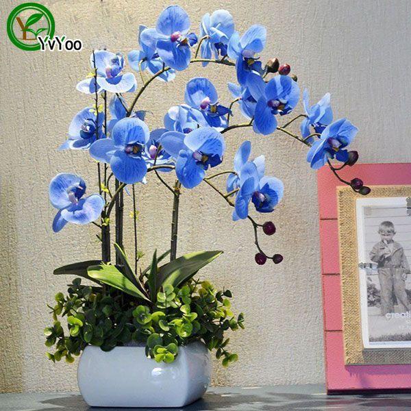 30 Parçacıklar / lot Güve orkide tohumları Çiçek Tohumları Ev Bahçe için Bonsai Saksı Bitkileri u013