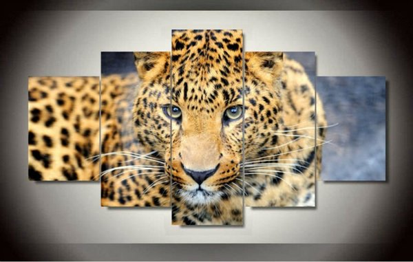 Unframed 5 Pcs Canvas painting of Leopard Home Decorative Art Picture Paint on Canvas Prints wall free shipping 2016 hot sale