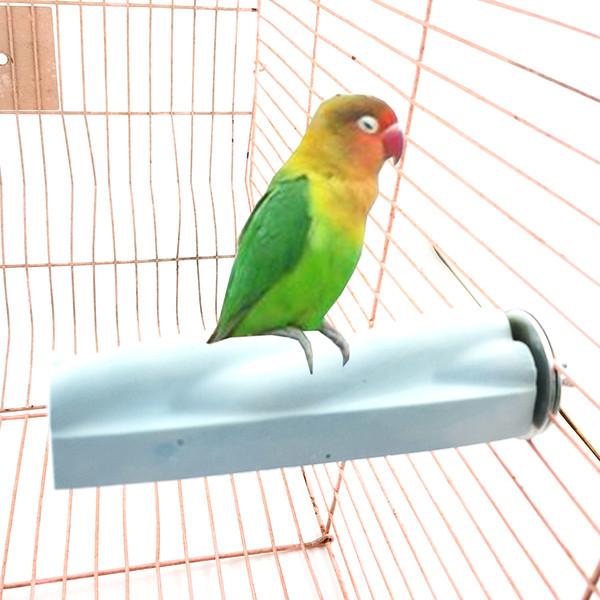 Pies de estrella púrpura y pico de seguridad de pico para pájaros Piedras de pulir de juguete