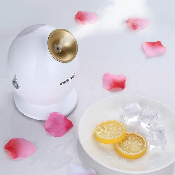 ElitElitzia ETKD233A Deep Cleaning Facial Steamer Moisturizing Multi-functional integrated nanometer water spray Humidifier Home