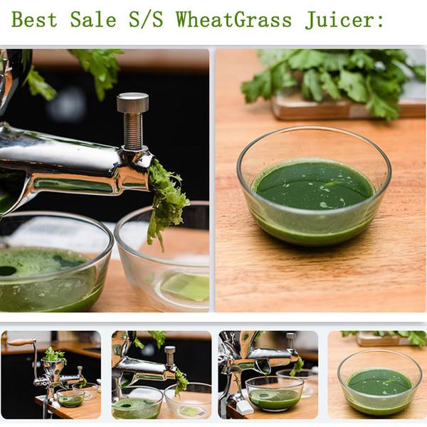 Manual Stainless Steel Wheatgrass Juicer Healthy Wheat Grass Juicer Machine Hand Wheatgrass Juicer Vegetable Tools