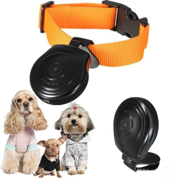 Hot sale Pet's Eye View Camera for dogs cats Digital Mini DV Clip-On Collar Pet Video Camera Camcorder with LCD screen