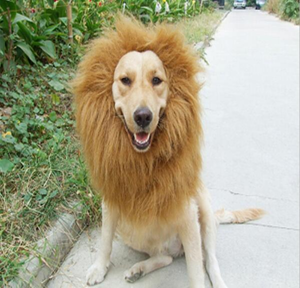 Lustiges nettes Haustier-Kostüm Cosplay Löwe-Mähnen-Kappen-Hut doggy Löwehut Qualitäts-Katzenspielzeug füllte Plüsch-Löwe-Kopfumfang Hut G850 an