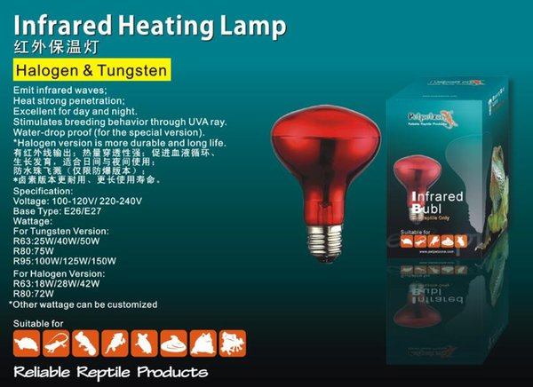 Wholesale- *FREE SHIPPING*PETPETZONE R80 75W/100W INFRARED HEATING BULB FOR REPTILE