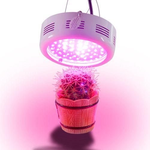 150W LED élèvent le spectre complet des lumières pour les plantes légumineuses LED de fruits à fleurs Hydroponics allumant AC85 110V 265V