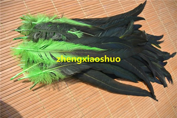 Envío gratis 200 unids / lote 12-14 pulgadas de color verde lima Cock Cock cola de gallo Pluma coque pluma floja para disfraces fiesta evento de halloween suministro