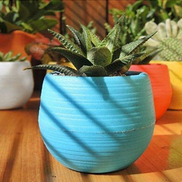 Gardening Flower Pots Small Mini Colorful Plastic Nursery Flower Planter Pots Garden Deco Gardening Tool 50pcs Free shipping