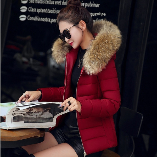 TOP Quality 2017 Winter Jacket Women Raccoon Collar Hooded Thick Down Coat For Women Winter coat female Parka
