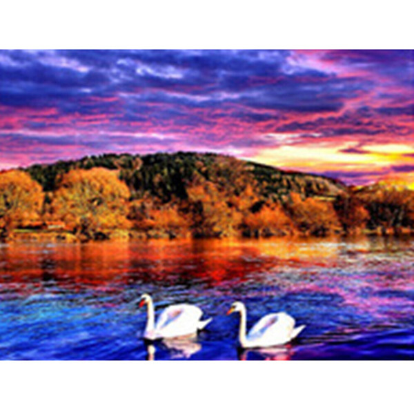 Diy Diamond Painting home decor Cross Stitch Embroidery Pasted Painting swan 2016 Fashion Wall poster 40X30CM HWB-760