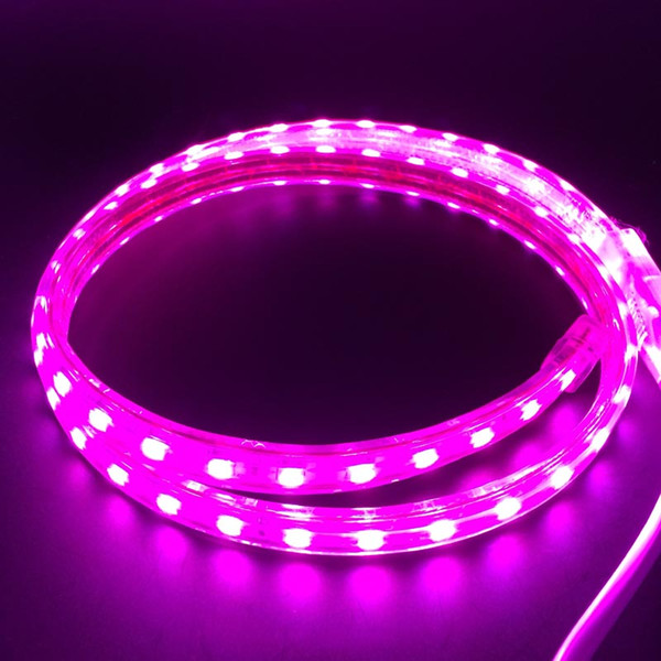50M 220V High Voltage Waterproof SMD5050 Led Light Strips RGB + Power Supply DHL Free Shipping