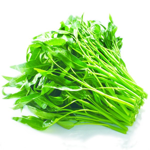 Water Spinach Vegetable 500 Seeds / Lot Four Season Easy to Grow Tasty Fast-growing Heirloom Vegetable DIY Home Garden