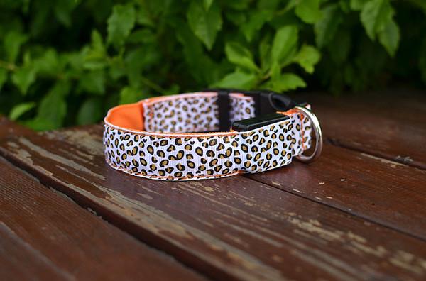 Mode LED Hundehalsband seitig durchscheinend, leuchtende Kragen SML Größe, Hundebedarf, Heimtierbedarf, rot, gelb, grün, blau, pink, 2X