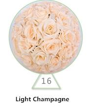 Light Champagne