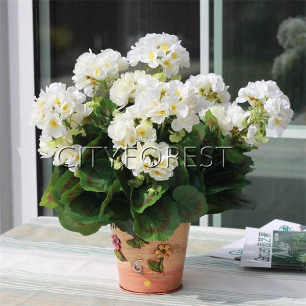 Geranium White Flower 5 Stück Pelletierte Samen DIY Hausgarten mehrjährige Container Landschaft Bettwäsche Blume Pflanze hohe Keimung