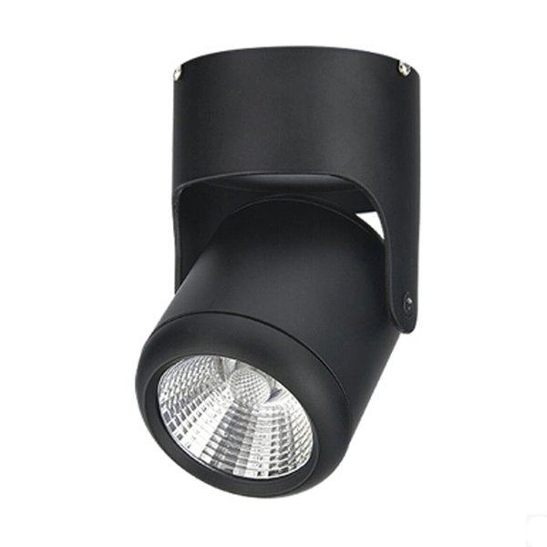 5W 10W 20W Super Bright Spot light 180 Degree Rotation Ceiling Lamp White / Warm White AC 85-265V Led Downlights Surface Mounted