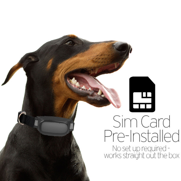 Small GSM GPRS Tracker kis pet dog people Waterproof IPX65 Mini GPS Dog Tracker Add Supper Battery Life with Mobile Phone Tracking System