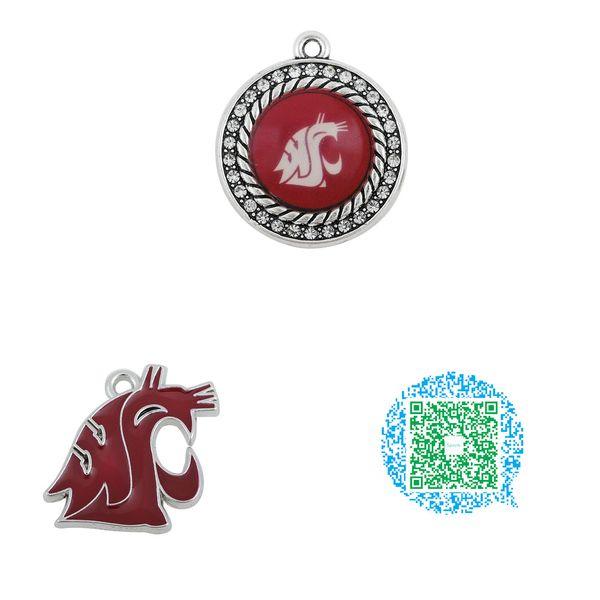 Vente en gros-10pcs Washington State Cougars College Team émail bijoux charmes pour collier Bracelet