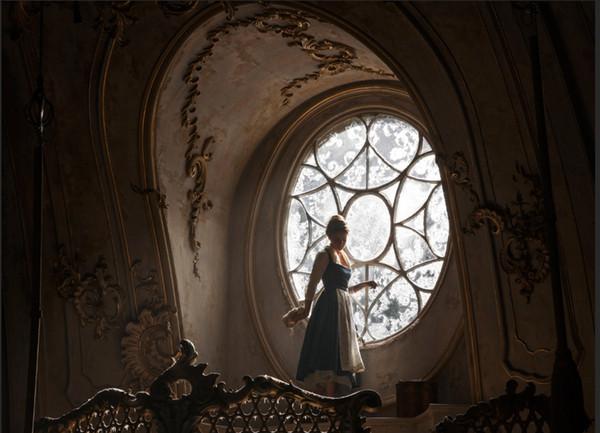 7x5FT Beauty Beast Dachboden Fenster Sonnenlicht Benutzerdefinierte Fotostudio Hintergrund Hintergrund Banner Vinyl 220 cm x 150 cm