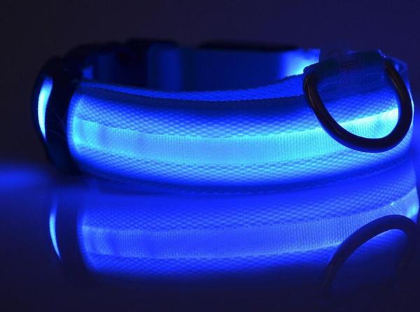 Collier en nylon lumineux de sécurité de collier de léopard de série de léopard d'éclair de LED de collier de chien d'animal familier de 2.5cm de large pour des petits chiens moyens