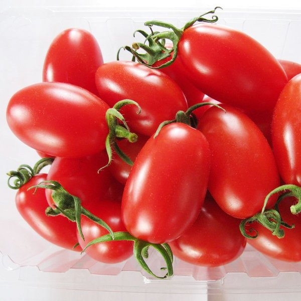 A Package 100 PCS Red cherry tomatoes Seed Balcony Fruits Vegetables Bonsai Potted Plant Seeds Tomato Seeds