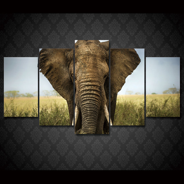 5 Pcs/Set Framed HD Printed Africa Elephants Landscape Group Painting room decor print poster picture canvas Free shipping/ny-013