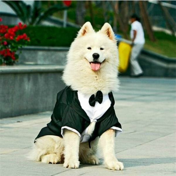 Big Dog Clothes Large Dog Wedding Suit Tuxedo Garment Clothes For ...