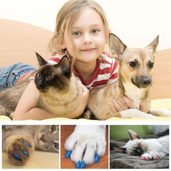 hot 20pcs/lot Soft Pet Dog Cats Kitten Paw Claws Control Nail Caps Cover wraps catlike sets cat armor nail cap with glue