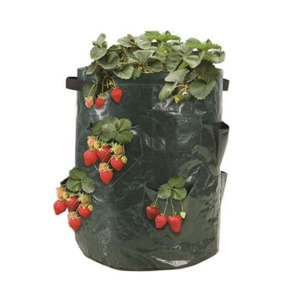 Strawberry Planting PE Bags Family Garden Balcony Garden Pots of Organic Vegetables Potatoes Planters Growing Bag 50pcs/lot