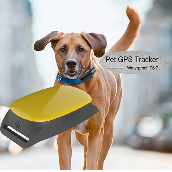 Professional Waterproof Small GPS Tracking Dogs Anywhere TK108 Can Insert Collar for dog/pet Monitor Tracking Anti-theft Alarm Tool Device