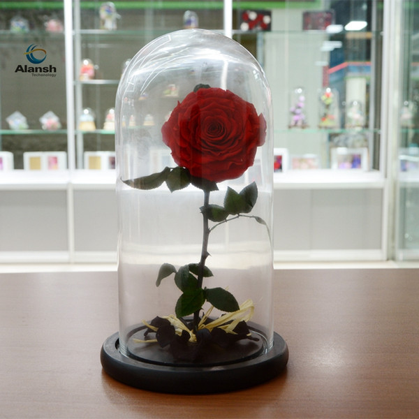 DIY Decoration Christmas Gifts1 PC The Little Prince Glass Cover Fresh Preserved Flowers Rose