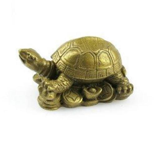 Collection of small turtle auspicious Lucky evil turtle turtle