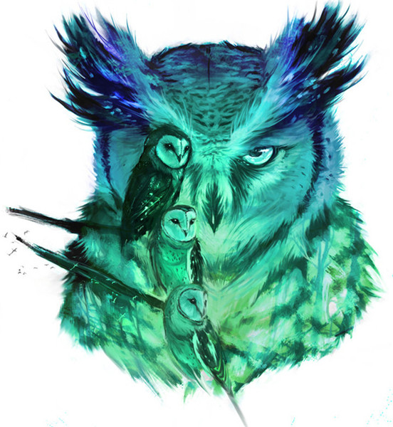 5D Diamond Embroidery needlework diy Diamond painting Cross Stitch Kits animal cute green owl full round diamond mosaic Room Decor yx1093