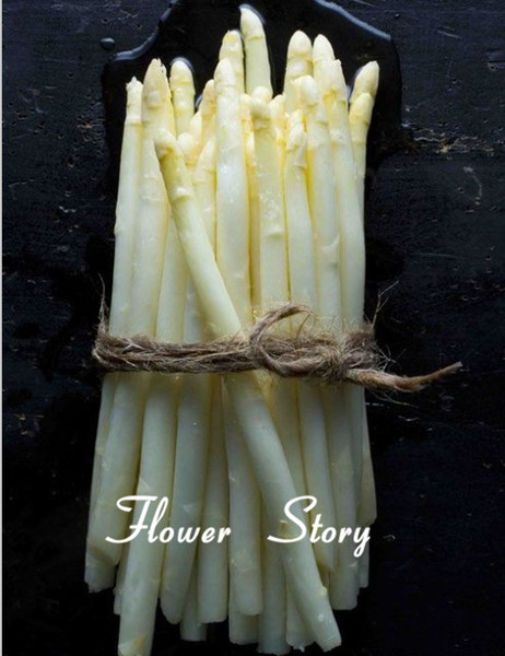 20 White Asparagus Seeds Rich in Vitamins Vegetable Seeds Growing Trouble-Free Garden Free Shipping