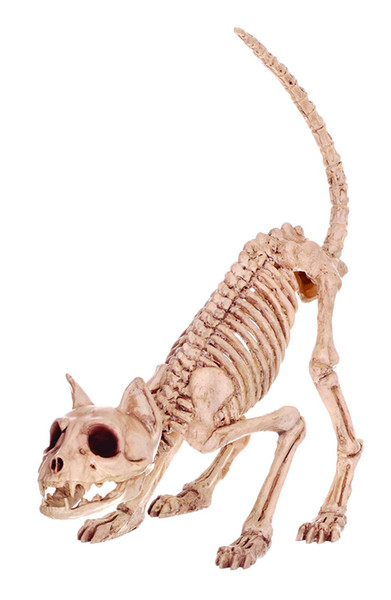 Fantasy Bone Skeleton Cat Animal Lil 'Kitty Bonez Huesos esqueleto para Horror Decoración de Halloween
