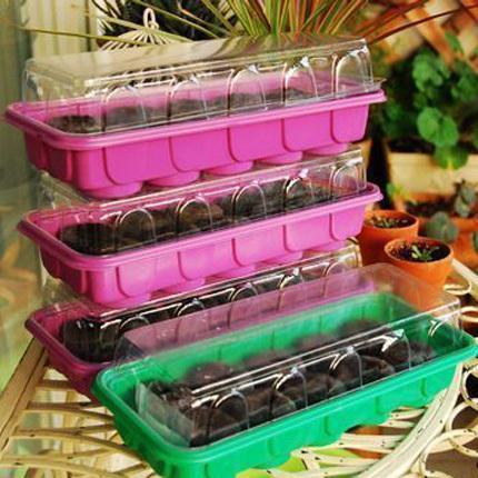 garden planting 4pcs nursery tray (10 holes) and 40pcs 38mm jiffy block to put seed bonsai flower nursery plastic seedling tray