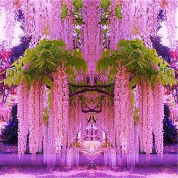 10pcs Purple Wisteria Flower Seeds Perennial Climbing Plants Bonsai Home Garden