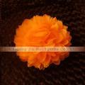 22 # orange,