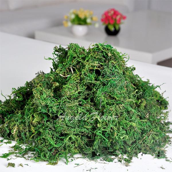 Atacado-50g / bag Manter seco real musgo verde plantas decorativas vaso de relva artificial de seda flor acessórios para decoração vaso de flores