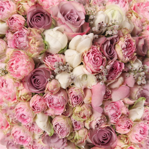 2019 Blooming White Pink Roses Photography Backgrounds Digital Printed Kids Children Wedding Flower Wall Photo Studio Backdrops Vinyl Fabric From