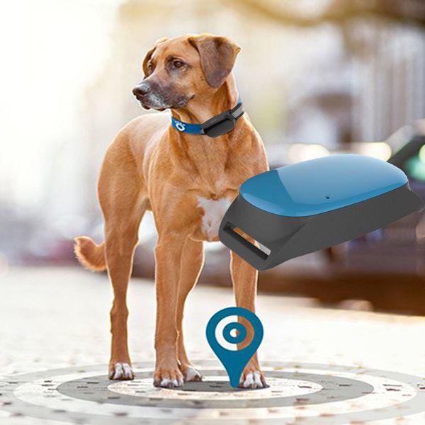 Best Selling Mini kids Pets GPS TrackerMini GPS Tracker For Cat/GPS Locator Cell Phone