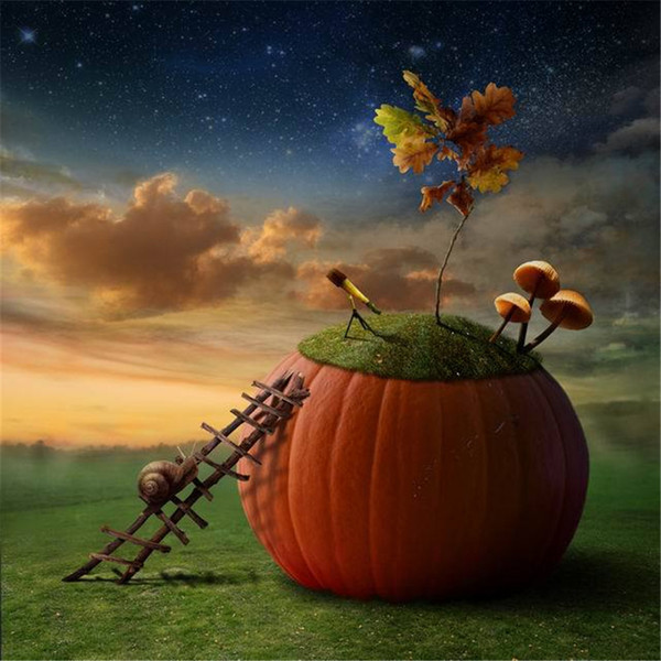 Vinyl Art Fabric Halloween Backdrops for Photography Night Sky Stars Snail on Ladder Big Pumpkin Children Studio Photo Background Fairy Tale