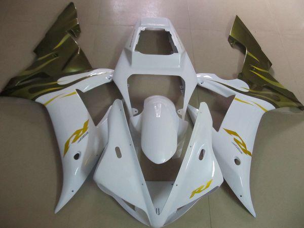 Bodywork Fairing kit for Yamaha YZF R1 2002 2003 green white fairings set YZF R1 02 03 OT15
