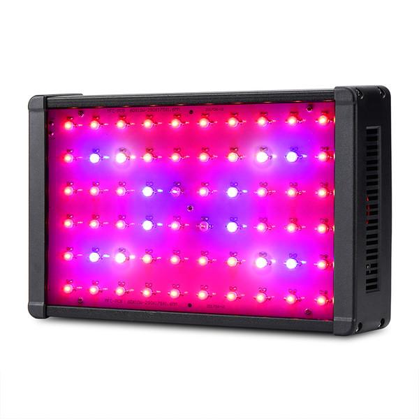 Double Chips 600W LED Grow Light Full UV IR Hydroponics LED Pianta Grow Light per piante da appartamento Fioritura e crescita