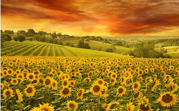 Custom 3d wall mural Sunflower background angel wallpaper murals abstract wallpaper papel parede tijolo