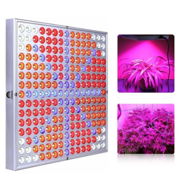 Invernadero 45W LED Grow Light Red Blue Spectrum Hydroponic 225LED Flower Planta de Interior Lámparas
