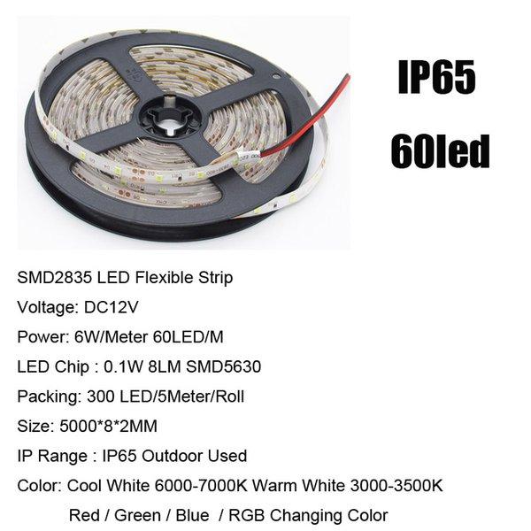 SMD2835 60LED / M IP65