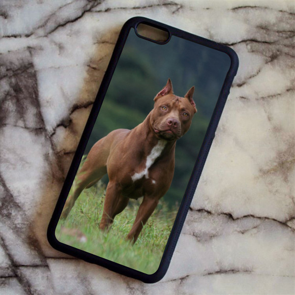 Pit Bull Terrier Beautiful Dog funny Phone Cases For iPhone 6 6S Plus 7 7 Plus 5 5S 5C SE 4S Back Cover