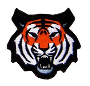 tigre naranja