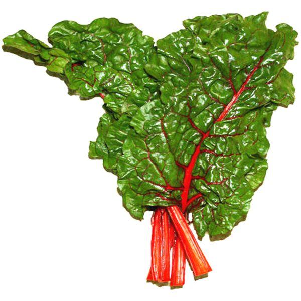 Leaf Beetroot Vegetable 100 Fresh Seeds Heirloom Highly Ornamental Salad Vegetable Perfect for the Flower and Vegetable Garden